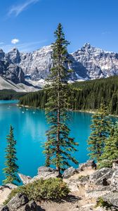 Preview wallpaper mountains, lake, trees, landscape, bright