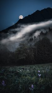 Preview wallpaper mountains, trees, fog, moon, night, landscape
