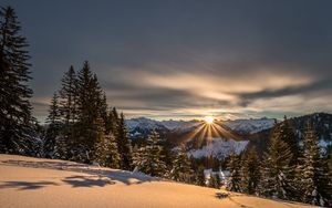 Preview wallpaper mountains, winter, snow, sunshine, firs