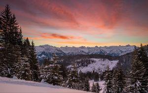 Preview wallpaper mountains, winter, snow, fir-trees, trees, hills