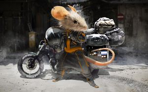 Preview wallpaper mouse, motorcyclist, motorcycle, helmet