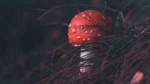 Preview wallpaper mushroom, fly agaric, grass, blur