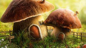 Preview wallpaper mushroom, house, door, art