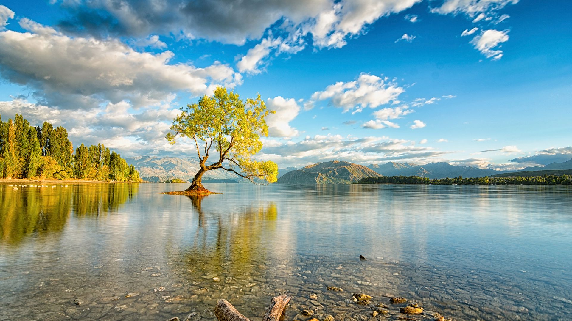 new zealand, island, lake, wanaka ...