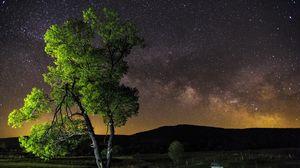 Preview wallpaper night, sky, stars, tree