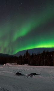 Preview wallpaper northern lights, forest, snow, winter, landscape