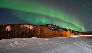 Preview wallpaper northern lights, forest, trees, snow, winter, nature