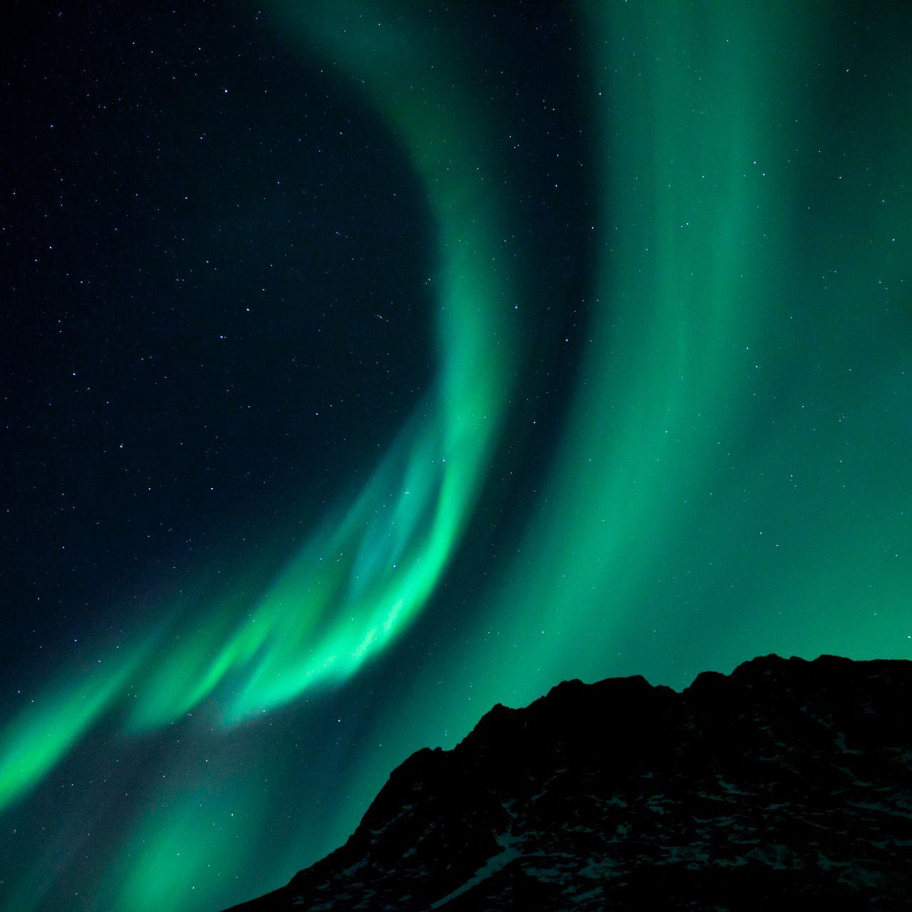 1280x1280 Wallpaper northern lights, night, night sky, phenomenon