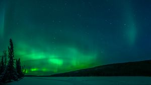 Preview wallpaper northern lights, trees, snow, winter, nature