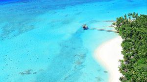 Preview wallpaper ocean, top view, palm trees, paradise, rest, tropics