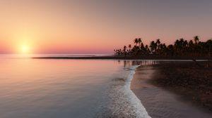 Preview wallpaper ocean, tropical, palm, coast, sunset, sky