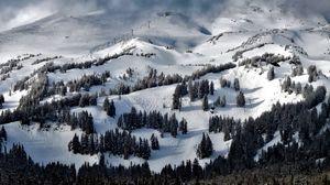Preview wallpaper oregon, united states, trees, mountains, snow
