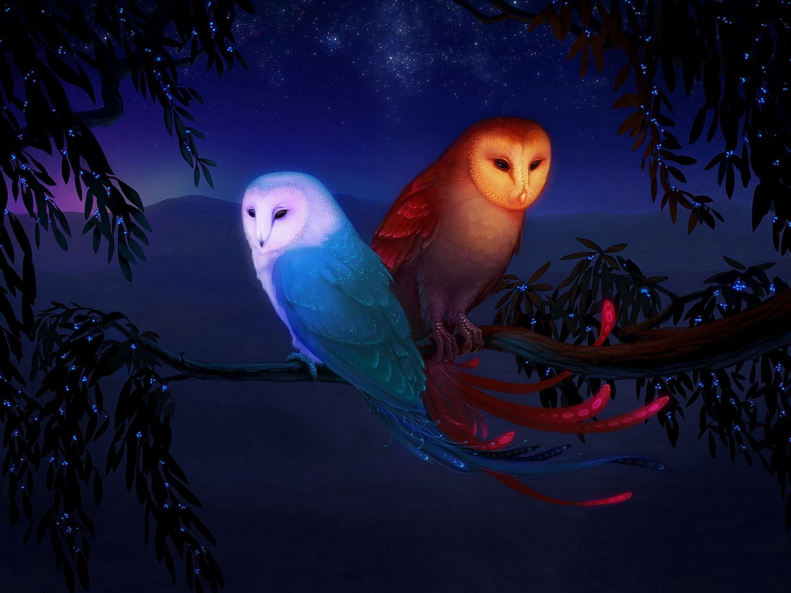 1600x1200 Wallpaper owl, night, birds, branch