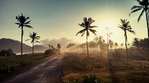 Preview wallpaper palm, road, sunset