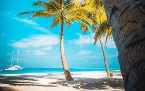 Preview wallpaper palm trees, beach, sand, tropics, paradise