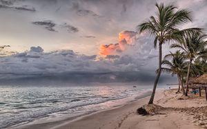Preview wallpaper palms, beach, sand, tropics, dominican republic