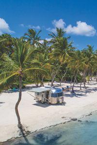 Preview wallpaper palms, tropics, paradise, rest, ocean, islamorada, florida, united states