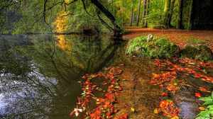 Preview wallpaper park, autumn, leaves, pond, trees, plate
