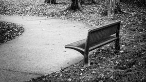 Preview wallpaper park, bench, leaves, autumn, black-and-white