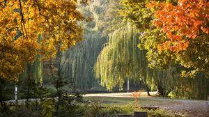 Preview wallpaper park, hungary, autumn, landscape