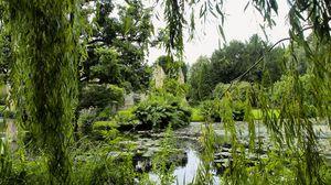 Preview wallpaper park, pond, trees, branches, landscape