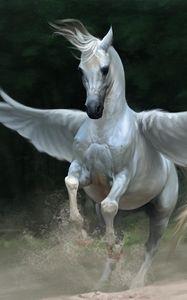 Preview wallpaper pegasus, horse, wings