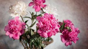 Preview wallpaper peonies, flowers, bouquet, basket, ribbon, blurring