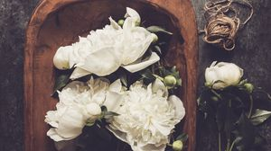 Preview wallpaper peonies, flowers, petals, bouquet, floristry, white