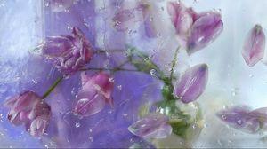 Preview wallpaper petals, plant, flowers