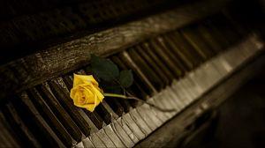 Preview wallpaper piano, rose, keys