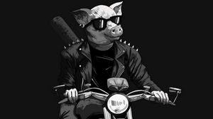 Preview wallpaper pig, sunglasses, biker, motorcycle, art, black and white