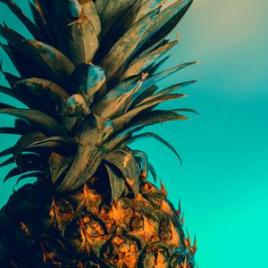 Preview wallpaper pineapple, fruit, exotic, tropical