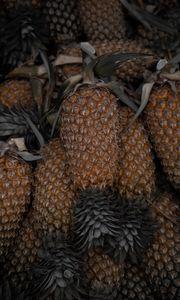 Preview wallpaper pineapple, fruit, leaves, macro