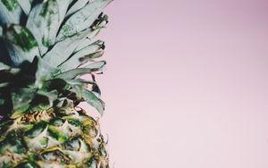 Preview wallpaper pineapple, fruit, minimalism