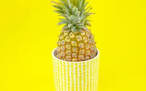 Preview wallpaper pineapple, fruit, pot, plant, yellow, bright
