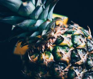 Preview wallpaper pineapple, fruit, tropical, exotic, closeup