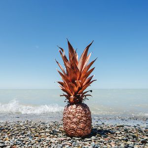 Preview wallpaper pineapple, fruit, tropical, gold, coast
