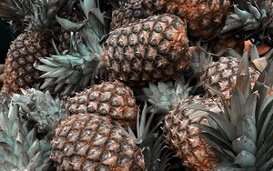 Preview wallpaper pineapple, fruit, tropical, leaves