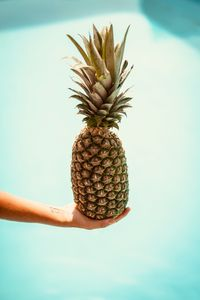 Preview wallpaper pineapple, hand, fruit