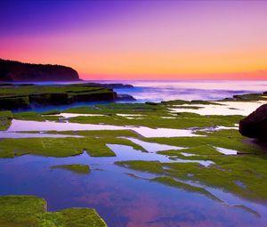 Preview wallpaper plates, moss, coast, stone, water, sea, horizon, orange, evening
