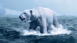 Preview wallpaper polar bear, ocean, photoshop, wave