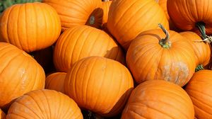 Preview wallpaper pumpkin, vegetable, autumn