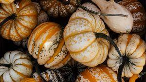 Preview wallpaper pumpkin, vegetable, autumn, halloween