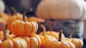 Preview wallpaper pumpkin, vegetable, harvest, autumn