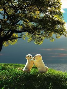 Preview wallpaper puppy, couple, sunset, nature, play, kids