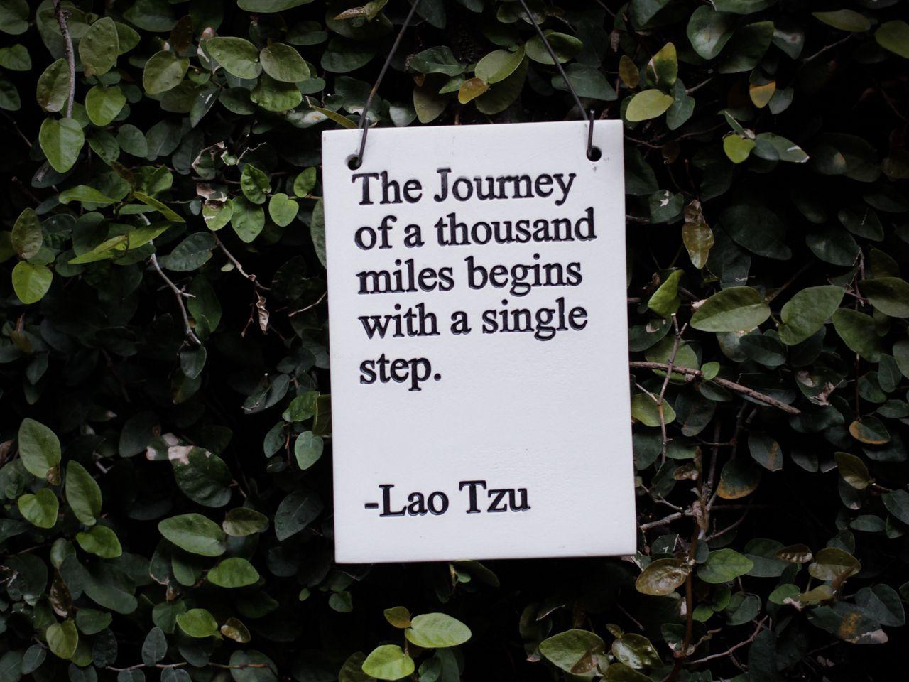 1280x960 Wallpaper quote, phrase, words, inscription, signboard, bush, leaves