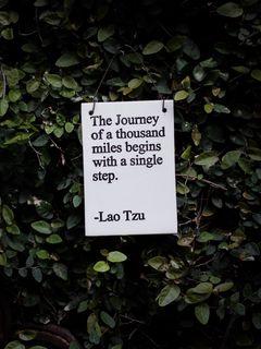 240x320 Wallpaper quote, phrase, words, inscription, signboard, bush, leaves