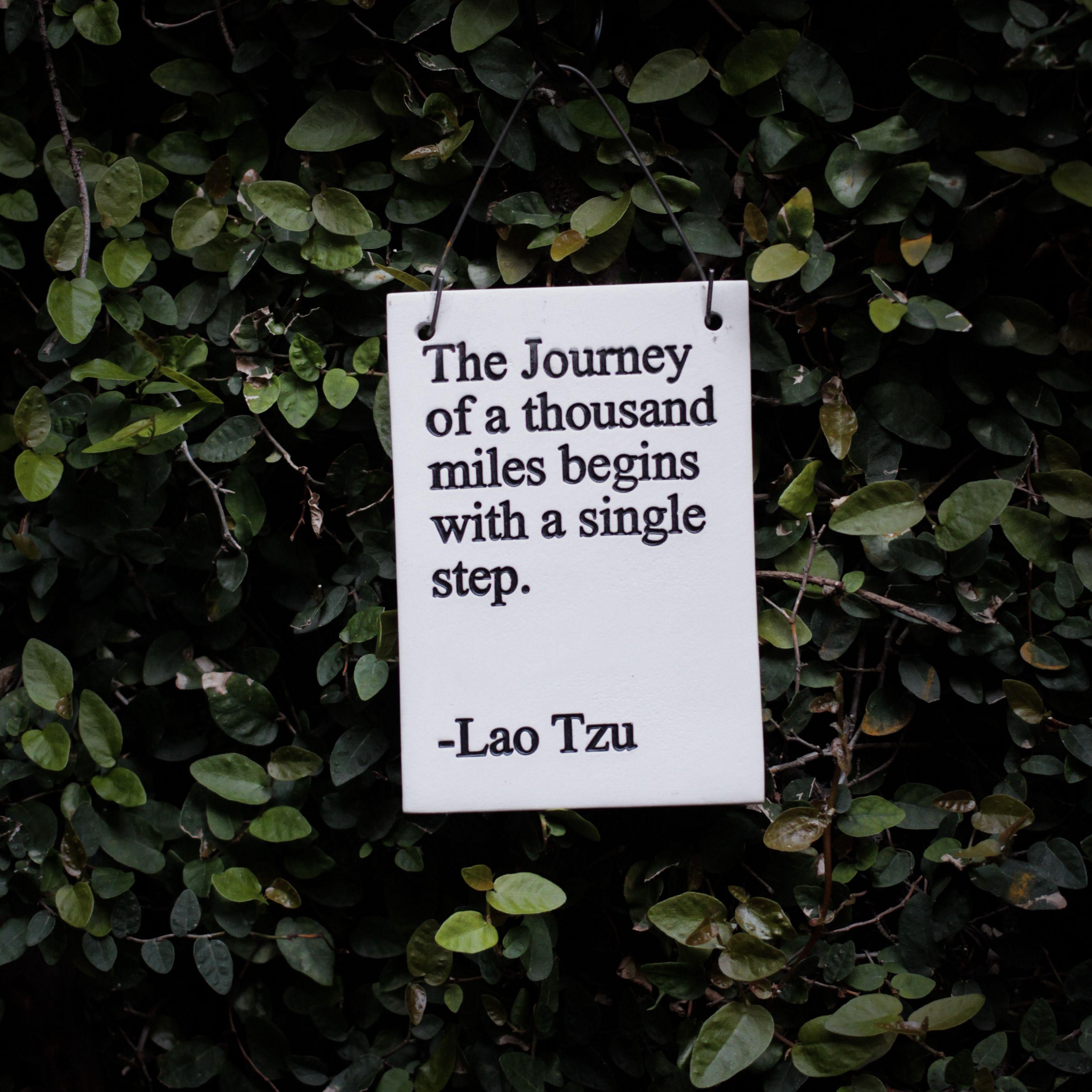 3415x3415 Wallpaper quote, phrase, words, inscription, signboard, bush, leaves