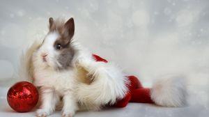 Preview wallpaper rabbit, new year, ball
