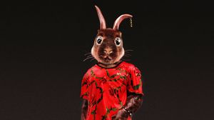 Preview wallpaper rabbit, style, funny, art